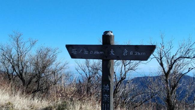 丹沢 塔ノ岳 登山 初心者 登山日記 0.8km 標識