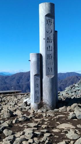 丹沢 塔ノ岳 登山 初心者 登山日記 山頂