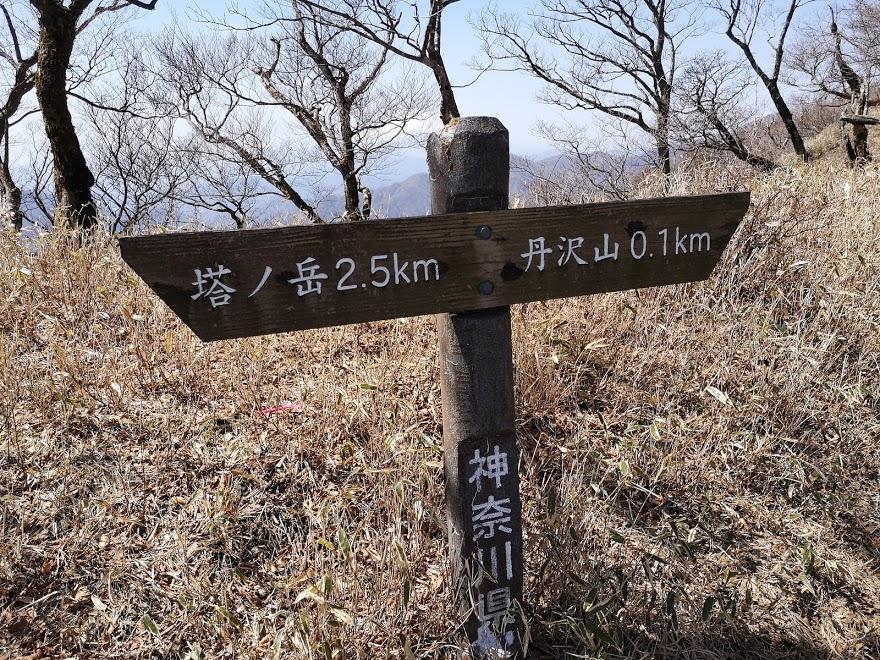 丹沢山 塔ノ岳 丹沢 登山 山頂 縦走